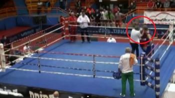 Imagini socante la un meci de box: arbitrul a fost batut cu bestialitate in ring, celalalt boxer s-a speriat si a fugit: VIDEO
