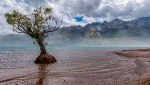Taramul de basm din Pacificul de Sud: Locul în care omul ramane mut in fata maretiei naturii   GALERIE FOTO