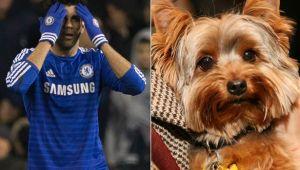 """Drama groaznica prin care a trecut Diego Costa: """"A fost in depresie o luna!"""" Cum si-a omorat propriul caine"""