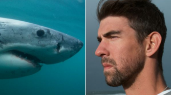 VIDEO A facut-o! Michael Phelps s-a intrecut cu un RECHIN! Cine a castigat