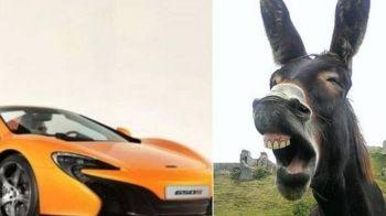 Proprietarul unui magar, obligat de instanta sa plateasca 5800 € dupa ce animalul a mancat vopseaua de pe un McLaren :)